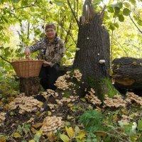 В лес по грибы) :: Елена Салтыкова(Прохорова)