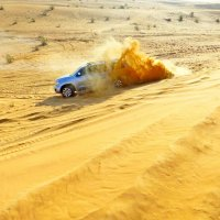 Сафари по пустыне :: Raduzka (Надежда Веркина)