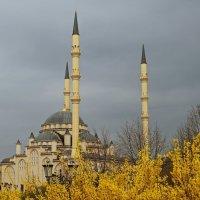 Мечеть Сердце Чечни. Грозный :: Oksanka Kraft