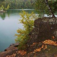 Осенью на озере Ая :: Галина Козлова