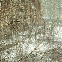 Снежным апрельским днем :: лоретта