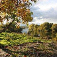 Осень на Дону :: ZNatasha -