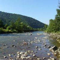 Река   Чёрная   Тиса   в   Квасах :: Андрей  Васильевич Коляскин