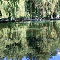 Горное озеро в Болгарии :: Аркадий Басович