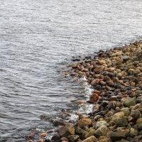 Балтийский берег :: Андрей Щукин