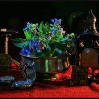 Натюрморты с цветами ОКОПНИКА  (5 фотографий) :: Юрий ГУКОВЪ