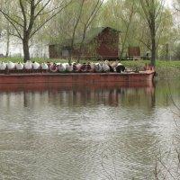 Бакенщик на отдыхе. На реке разлив... :: Александр Скамо