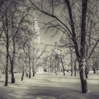 Зимний парк.......... :: Александр Селезнев