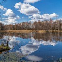 Какое небо голубое... :: Андрей Дворников