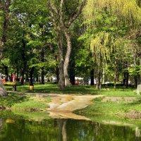 Солнечный день в парке. :: barsuk lesnoi