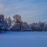 Зима,прощай!!! :: Rassol Risk