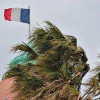 Ветер Франции :: Nina Karyuk
