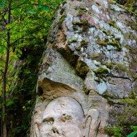 Ящерские скалы. :: Ирина Руднева