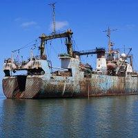 У Берегов Намибии. :: Jakob Gardok
