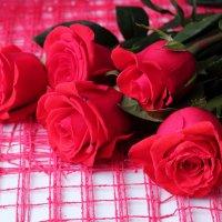 Розы красные :: Лидия (naum.lidiya)