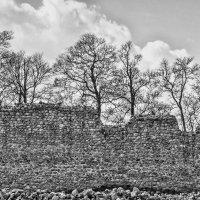 Замок в Мядининкай :: Kliwo