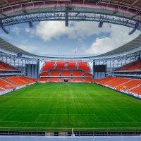 Екатеринбург Арена :: Ежъ Осипов