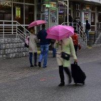В дождь :: dindin
