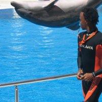 А вот и дельфин. :: Татьяна Гусева
