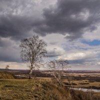 Ветреный день :: Виктор Четошников
