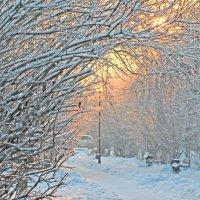 Зимний день на исходе :: Екатерина Торганская