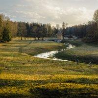Весенние прогулки по вечернему парку. :: Олег Бабурин