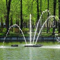 В городском саду :: Милешкин Владимир Алексеевич