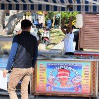 Мороженое из конского молока! :: Марина