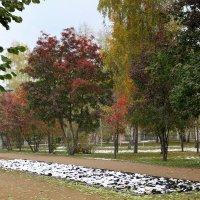 Красивая осень :: Vlad Сергиевич
