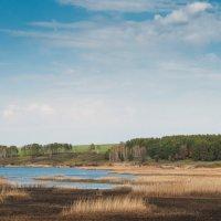 Весенний пейзаж :: Nyusha