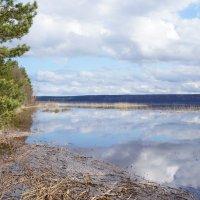 Берег Суходольского озера :: Дарья :)