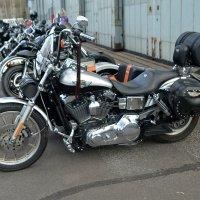 мотоциклы :: Caren Yvonne Rikkilä