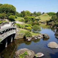 Японский сад :: Tatiana Belyatskaya