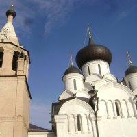 Свято-Успенский Старицкий монастырь 16 века :: Марина Домосилецкая