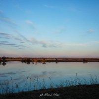 У озера... :: Elena Wise
