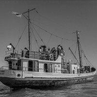 СССР, 1988 г. Последнее плавающее судно на Аральском море. :: Игорь Олегович Кравченко