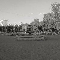 фонтан ч/б :: Юлия Денискина