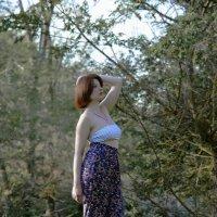 новая берёзка в лесу :: Роза Бара