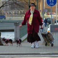 На прогулке :: Николай Танаев