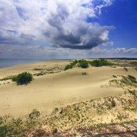 Балтийская Сахара :: Lusi Almaz