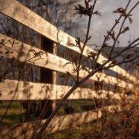 Склад, забор, закат.. :: Mike214