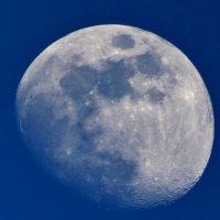 Загадочная луна  ... :: backareva.irina Бакарева