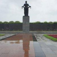Пискарёвское мемориальное кладбище. «Мать-Родина» :: Елена Павлова (Смолова)