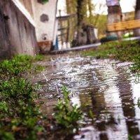 Дождливый май :: TATYANA PODYMA