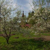Весна в Крутицком :: Александра