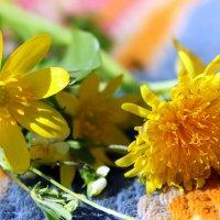 Солнечного дня , хорошего настроения, счастья и добра ВАМ!!! :: Валентина ツ ღ✿ღ