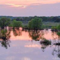 Закат на полой воде :: Сергей