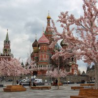 Московская весна :: Nina Karyuk