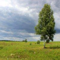 Одиночество :: Сергей