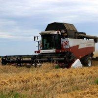 Уборка зерна :: Сергей